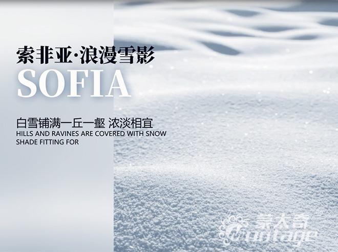 「新品」蒙太奇艺术涂料Sofia索非亚·浪漫雪影:浓淡相宜